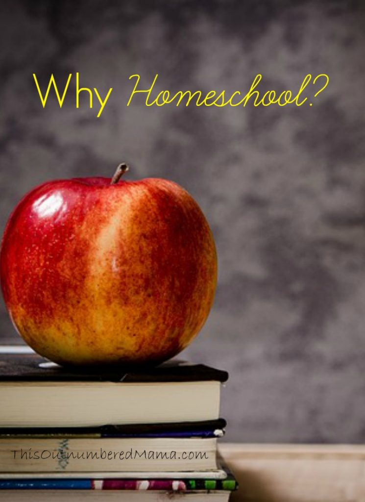 Why in the world would anyone homeschool? Isn't that just for weird families trying to shelter their kids from the real world? (hint.. no!)