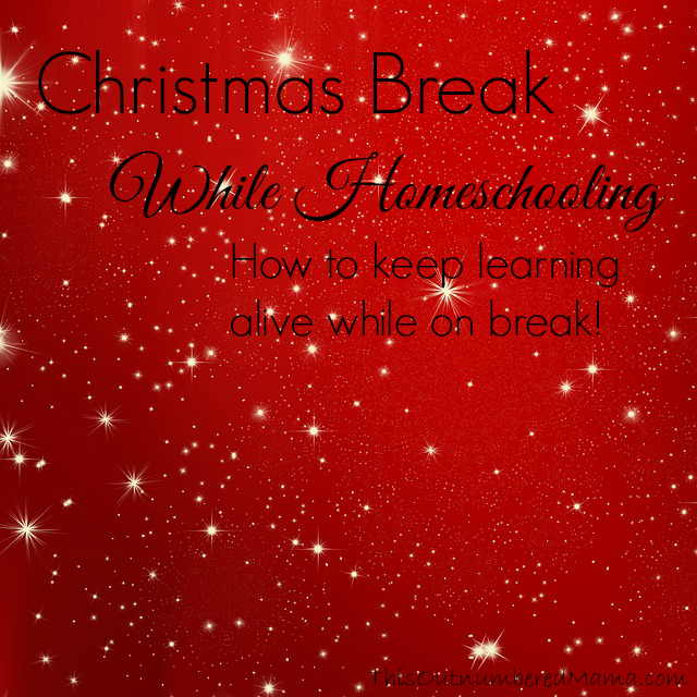 Christmas Break While Homeschooling