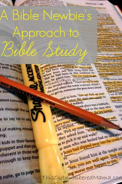 A Bible Newbie's Approach to Bible Study