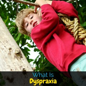 Dyspraxia is a really tough disorder to deal with, especially for kids. It is frustrating and exhausting. But what exactly is dyspraxia?