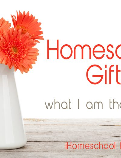 Seeing the Gifts of Homeschooling in a Difficult Season