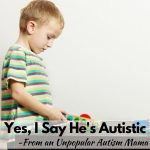 "I say my son is ""autistic"" instead of ""has autism"" and that makes me pretty unpopular with autism moms!"