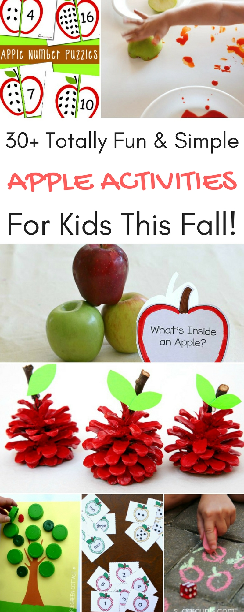 30+ Totally Fun & Simple Apple Activities for Kids This Fall