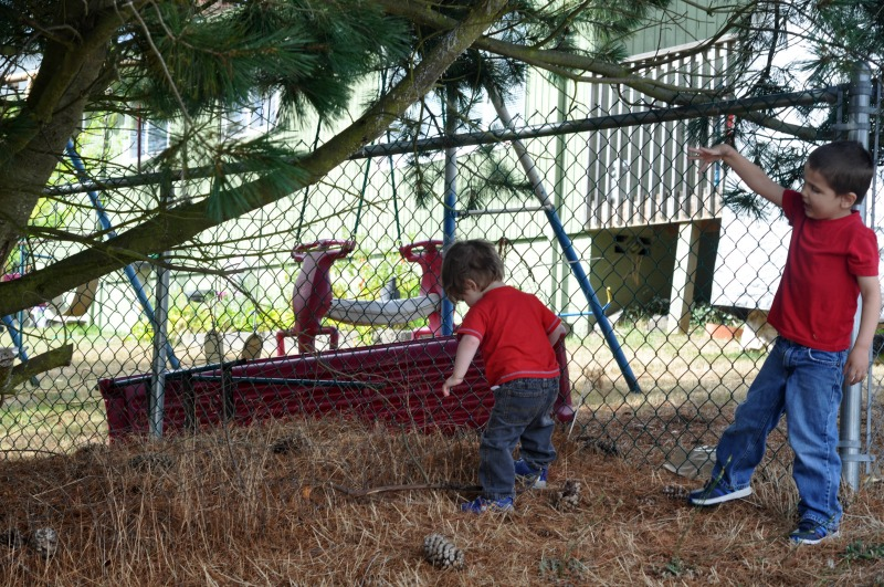 Outside time is a huge part of our homeschool, and we'd all go crazy without it. But why do we need to have outside time in our homeschool day, every day?