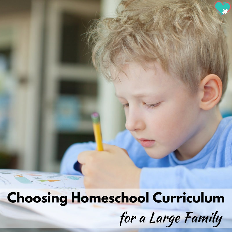 Choosing Homeschool Curriculum for Your Large Family Homeschool!