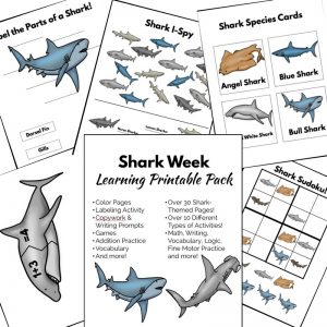 Shark Week Printable Learning Pack for a fun Shark Unit Study