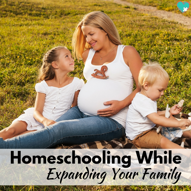 The Practical Guide to Homeschooling While Expanding Your Family