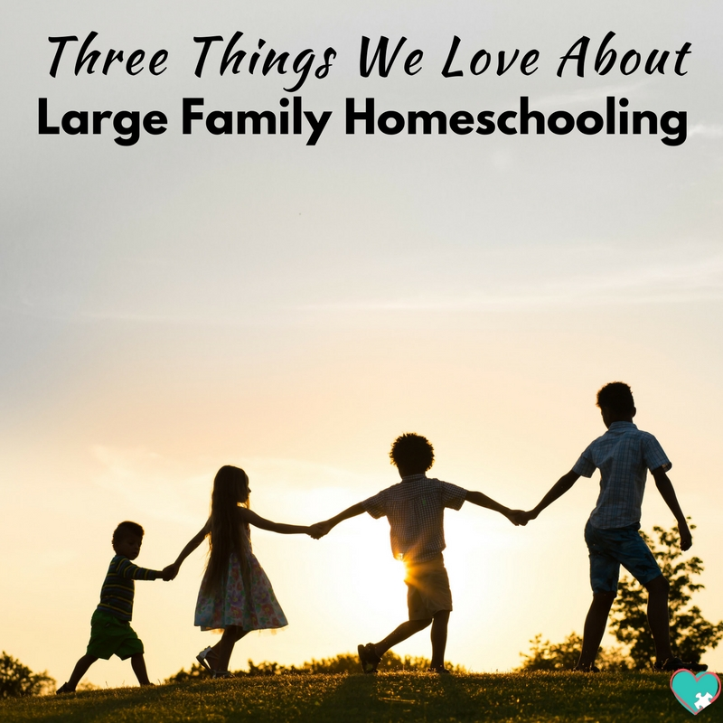 Three Things We Love About Large Family Homeschooling