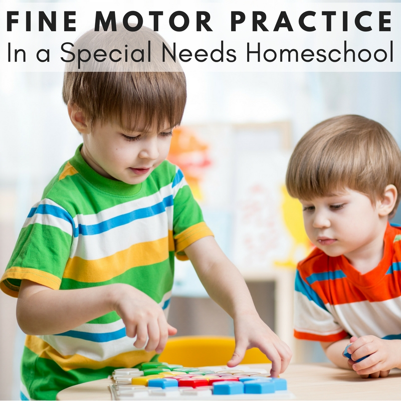 Fine Motor Practice in a Special Needs Homeschool