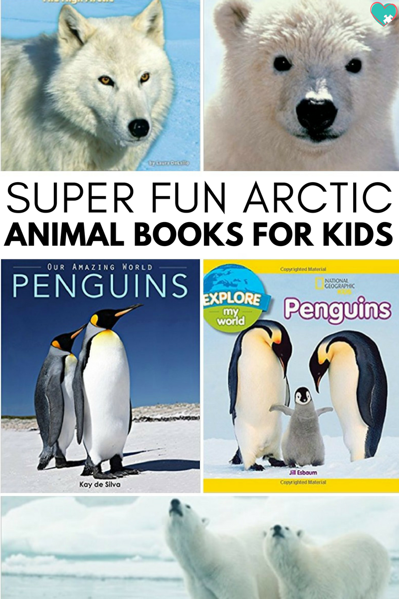 Super Fun Arctic Animal Books for Kids