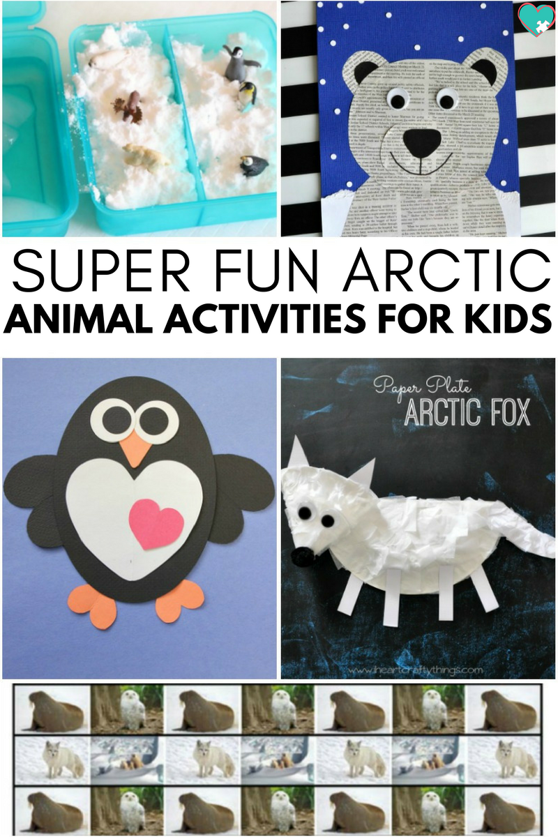 Super Fun Arctic Animal Activities for Kids