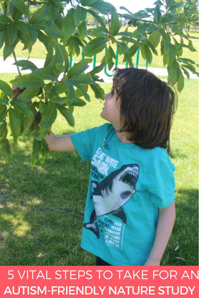 5 Vital Steps to Take for an Autism-Friendly Nature Study