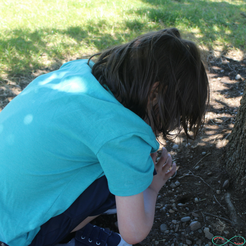 5 Steps You Must Take for an Autism-Friendly Nature Study