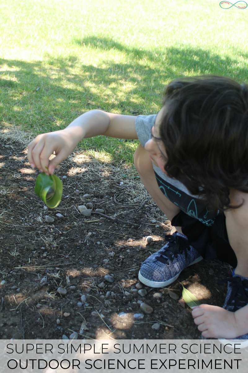 This super simple outdoor nature science activity is PERFECT for summer!
