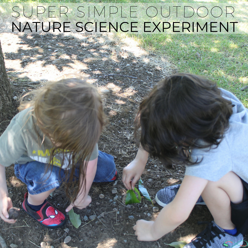 Super simple Outdoor Nature Science Experiment