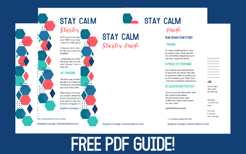 Screenshots of the Stay Calm Starter Guide pages in front of a navy background. White letters say: Free PDF Guide!